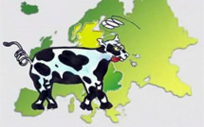 Η νόσος των τρελών αγελάδων